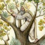 Chi erano i Druidi?