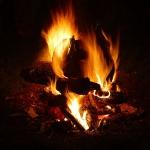 Aspettando Samhain e la Numerologia